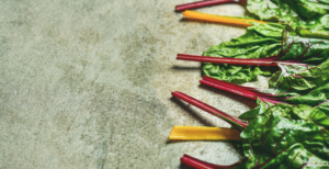 Growing Swiss Chard Is easier than you think! We show you how to get your garden bed ready, plant Swiss chard, and harvest to eat.