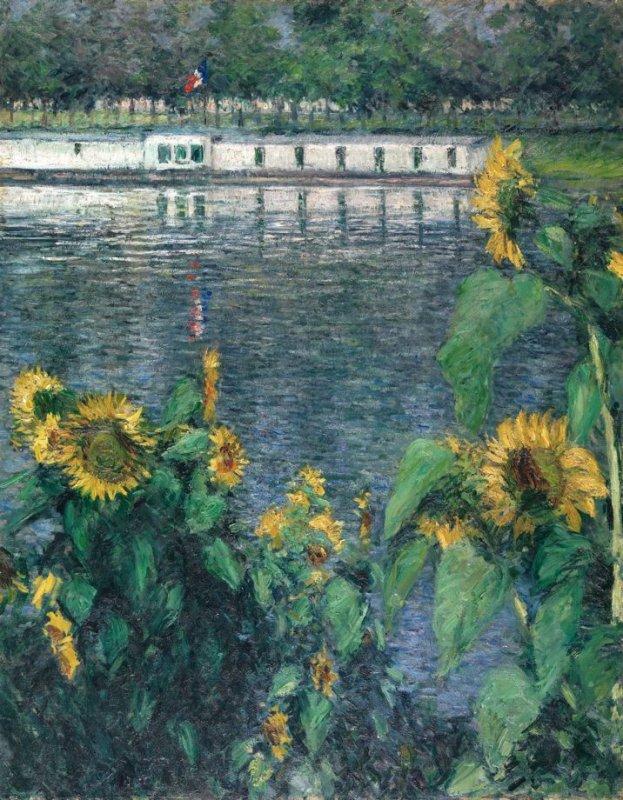 Sunflowers along the Seine Image