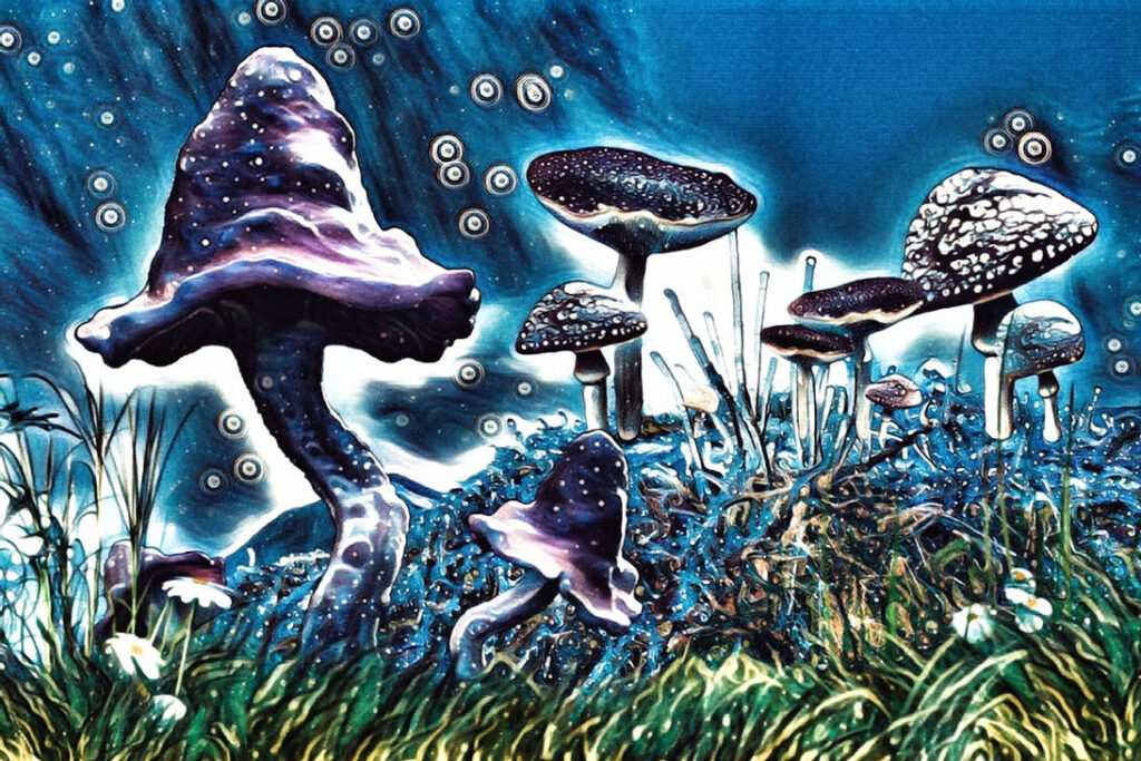 Medical Psilocybin May one day be used as prescription medicines! Psilocybin mushrooms could be the key to creating these prescriptions. Artist, work, museum