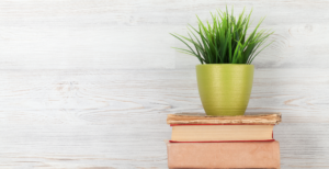 Books On Earth Science. Plant on top of books in front of wooden planks in front of wall