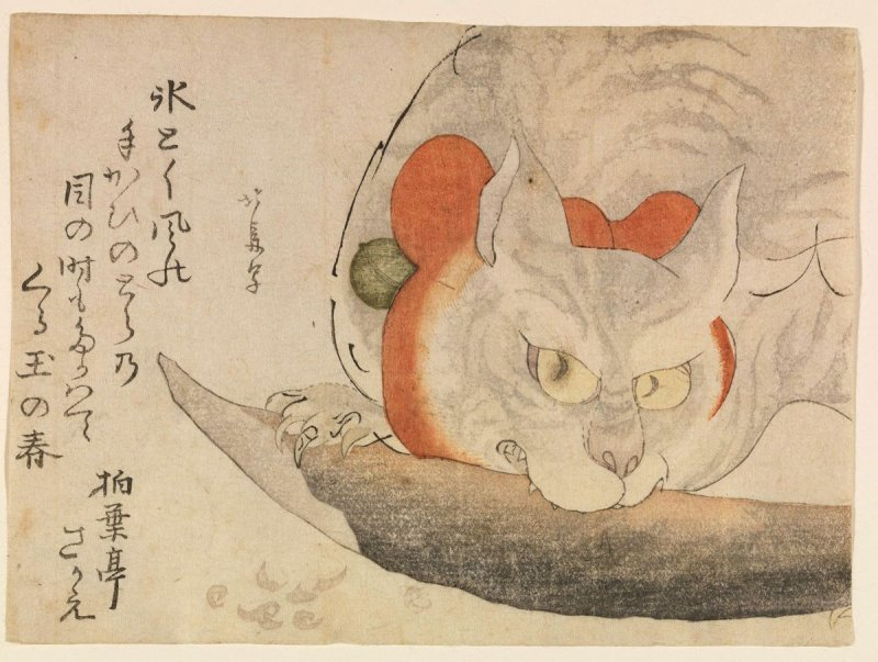 A Cat with a Red Silk Ribbon Eating a Piece of Fish Image